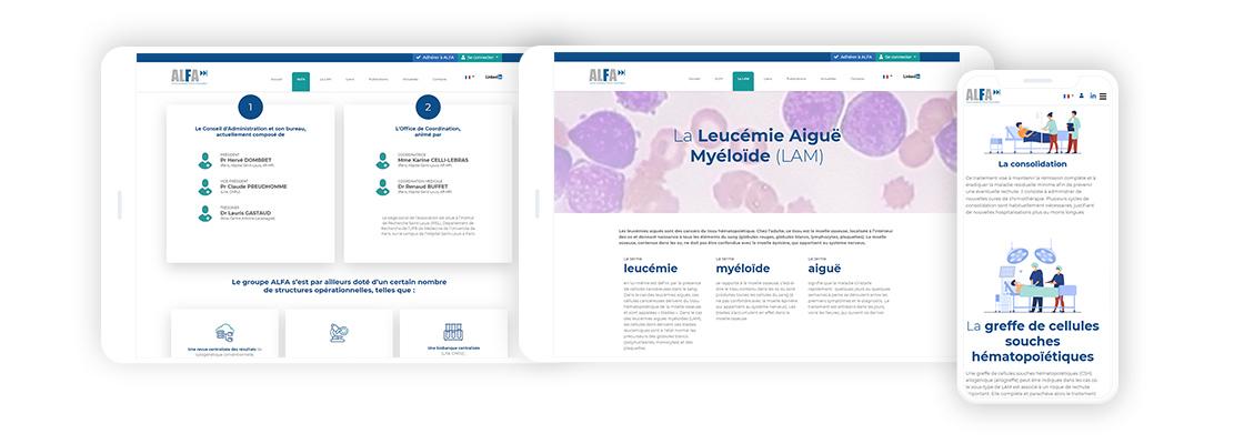 Interface site web Alfa